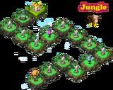 HMNM-Jungle-1-4