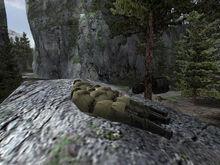 Ee-alps1-boulder