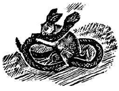 File:Hester and Pierre McConville's dæmon.png