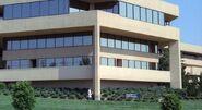 Katja Institute