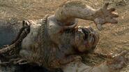 Walking Dead 2x04 003