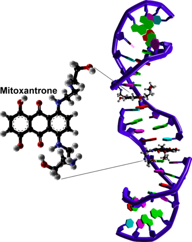 File:2500px DNA intercalation by mitoxantrone based on 4G0V.png