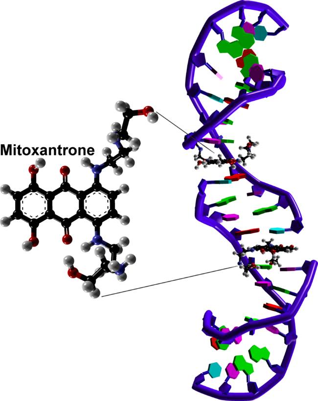 3000px DNA intercalation by mitoxantrone based on 4G0V