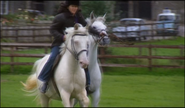 Dr Tricia Summerbee in Horses for Courses