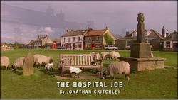 The Hospital Job title card