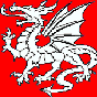 File:White Dragon small.png