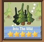 File:Into the Wild.jpg