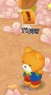HKO NPC Tippy013