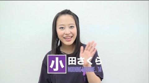 小田さくらからのお知らせ2014