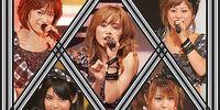 Morning Musume Concert Tour 2010 Haru ~Pikappika!~