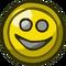 Smiley Tin Shield