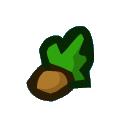 Chestnut Tree Seed