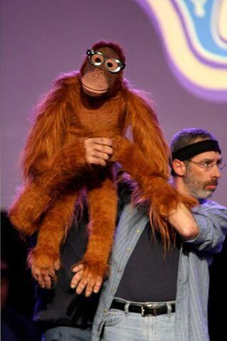 File:Orangutan.jpg
