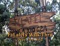 Falafel promises 02