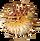 Blowfish-Sprite