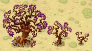Mama and Baby Creep Trees