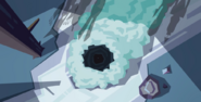 Star Nosed Moles 078