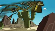 Iguanas 035