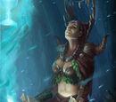Druid Sage