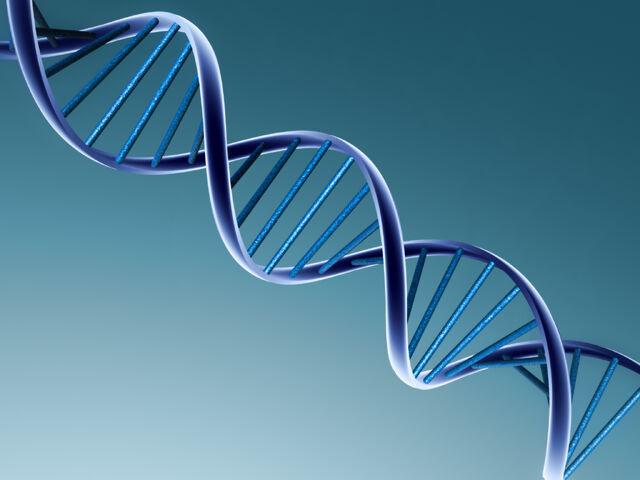 File:DNA Image.jpg