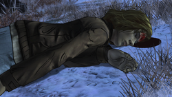 Natasha's Death
