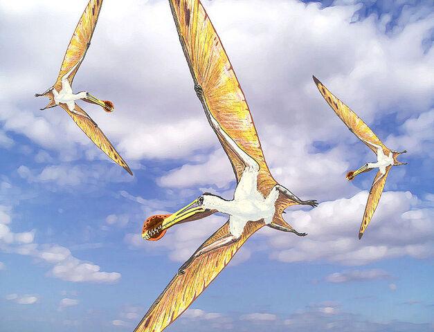 File:Ornithocheirus mesembrinus.jpg