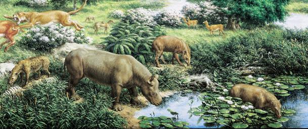 File:Oligocene 2.jpg