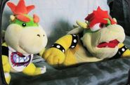 Bowser's jaw drop