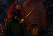 Merida fight