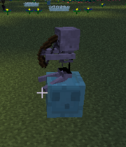 Riding blue slime