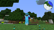 Wooden Shield-guard