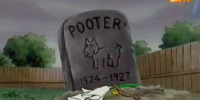 Pooter
