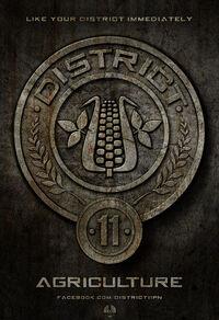 District-11