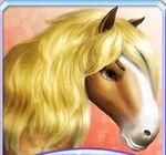 JFairyhorse tier 3 headshot