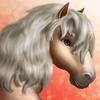 Dartmoor pony T1