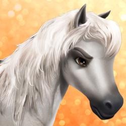 Arabian gray