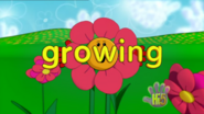 Opening Growing Up