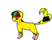 Color meow