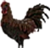 HO PBarn Rooster-icon