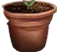 HO FloristS Potted Sapling-icon