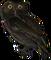 HO ConqC Owl-icon
