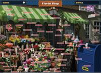 Scene Florist Shop-Map