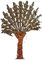 HO Tut Tree-icon