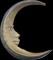 HO BriggsRoseGarden Moon-icon