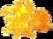 HO CandyS Butterscotch-icon