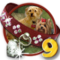 Quest Doggone Dog 9-icon
