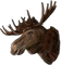HO Ski Moose-icon