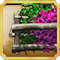 Quest Task Vegetable Garden-icon