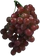 HO OceanL Grape-icon