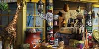 Curio Shoppe